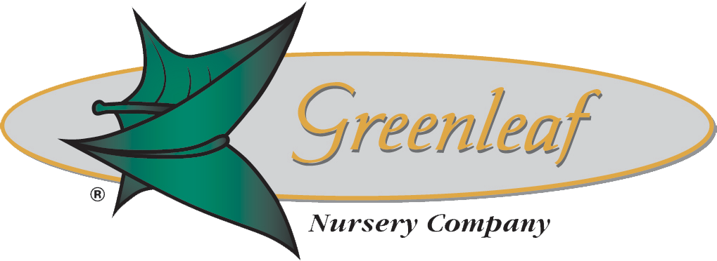 Greenleaf Nursery-North Carolina Division