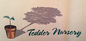 Tedder Nursery